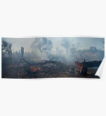 Scrub fire south of Alice Springs Poster
