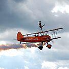Breitling Wingwalkers by Febev