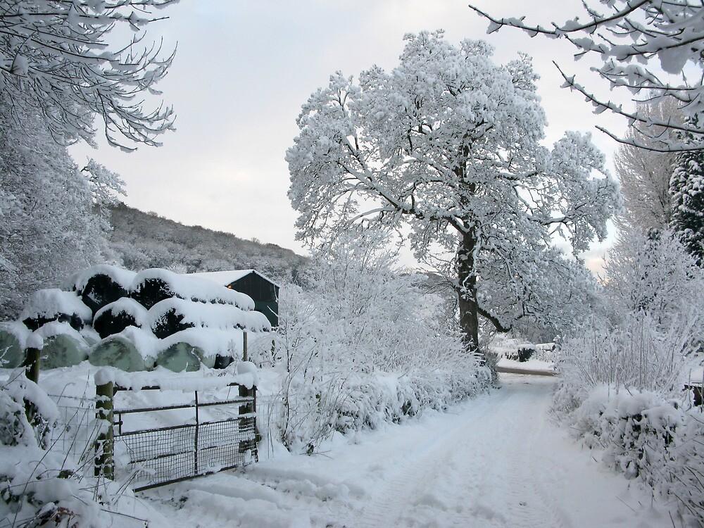 Conwy Valley in winter/Dyffryn Conwy yn y Gaeaf by blodauhyfryd