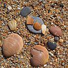 Stones, pebbles and seashells by MONIGABI