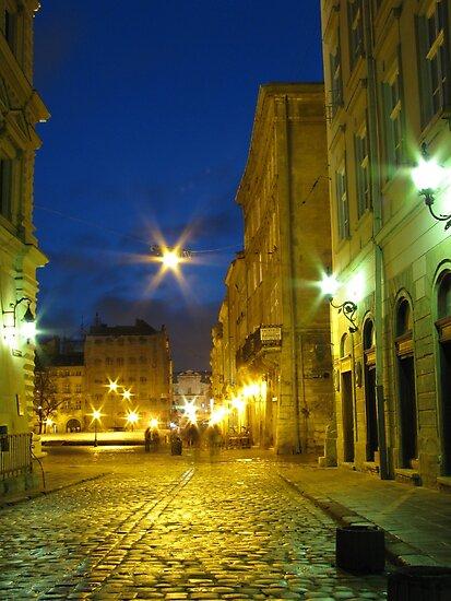 Lvov at night by Elena Skvortsova