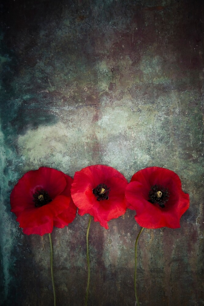 Red Poppies by Maria Heyens