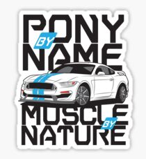 Ford Mustang GT350R Sticker