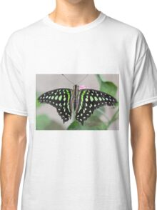 butterfly on the flower Classic T-Shirt
