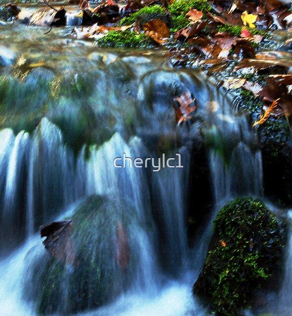 Autumn falls by cherylc1