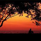 Contemplation of Life by jono johnson