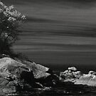 playa colomitos by jackson photografix