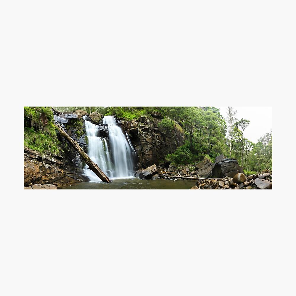 Stevenson's Falls, Otways National Park, Australia Photographic Print