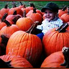 Cute Pumpkins by Brandy Bentz-Jackson