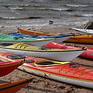 Kayaks galore by Fiona MacNab
