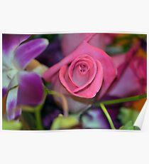 Aniversary Rose Poster