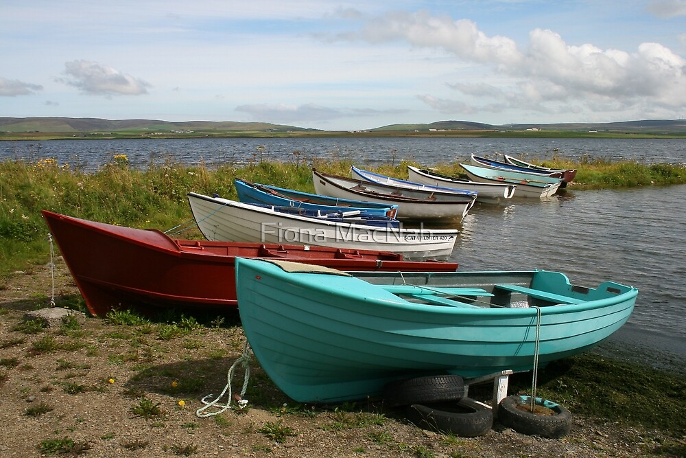Harray Loch by Fiona MacNab