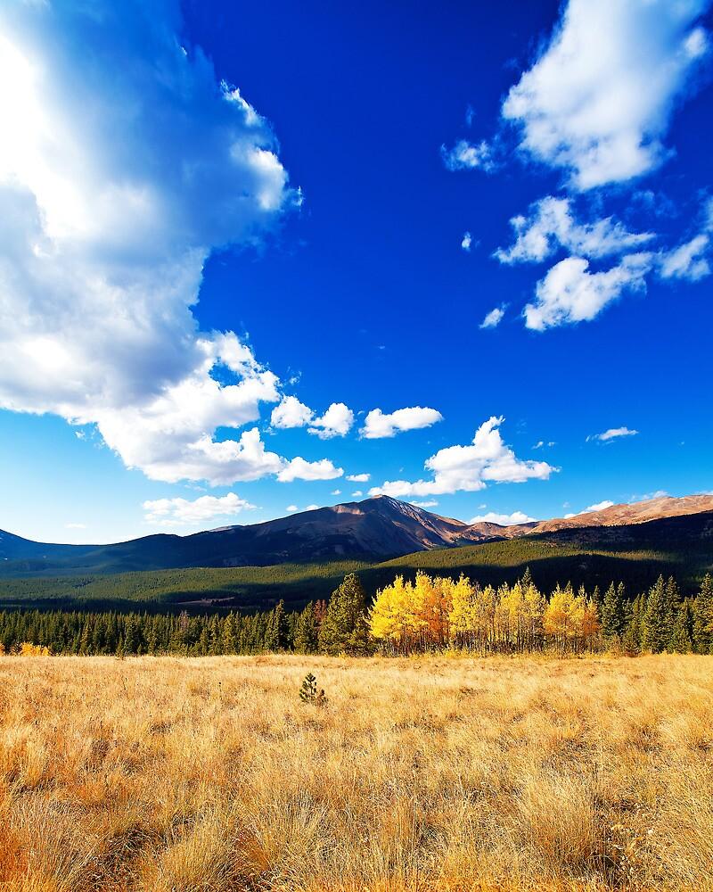 Mount Silverheels by Rick Louie