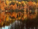 Another Beavers Bend Autumn by Carolyn  Fletcher