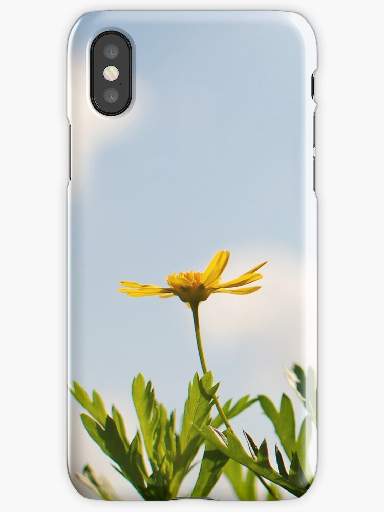 Spring - Yellow Flower iPhone Case by Denis Marsili