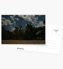 Cobbold Gorge Camp at Night Postcards