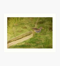 Spotted Sandpiper on the Kinnickinnic River Art Print