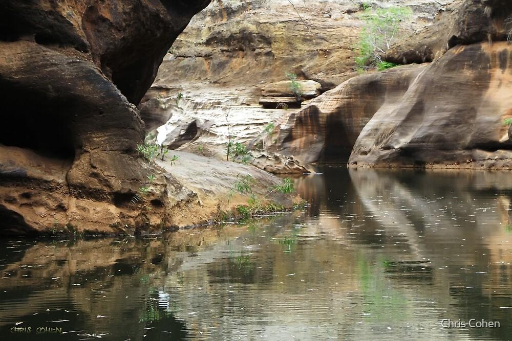 Cobbld Gorge by Chris Cohen