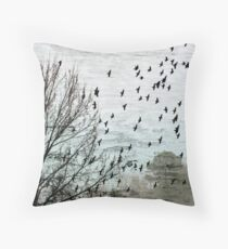 The Dream Act Throw Pillow