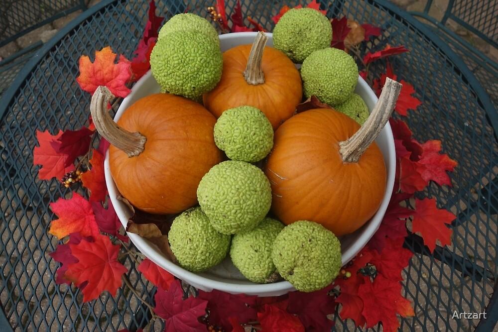 Osage Oranges and Pumpkins by Artzart