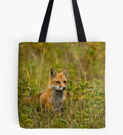 Red Fox In Field Tote Bag