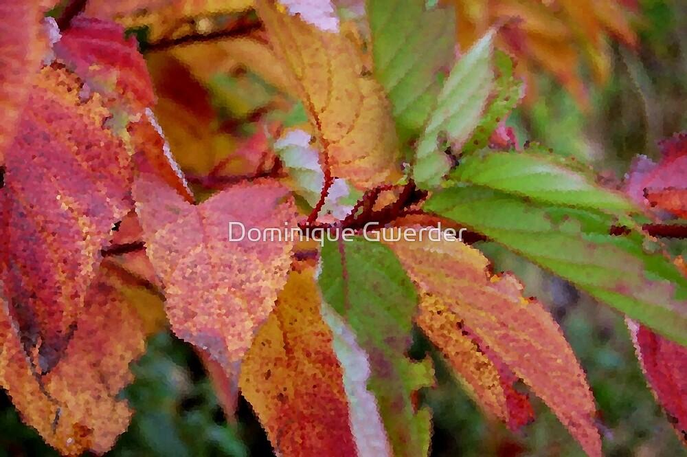 Autumn palette by Dominique Gwerder