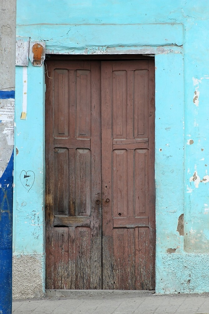 Brown Door in a Blue Wall by rhamm