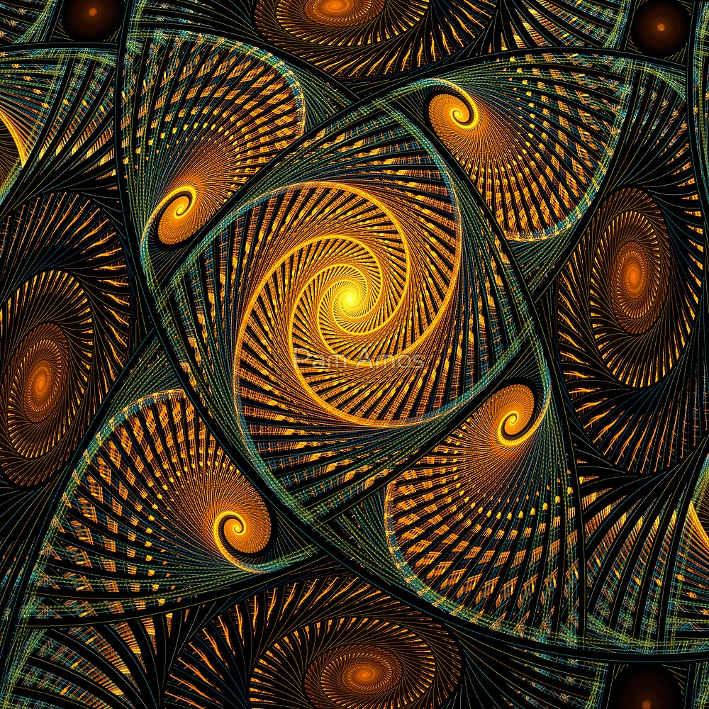 Ancient Spirals by Pam Amos