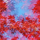maple leaves impression by Catherine Lau