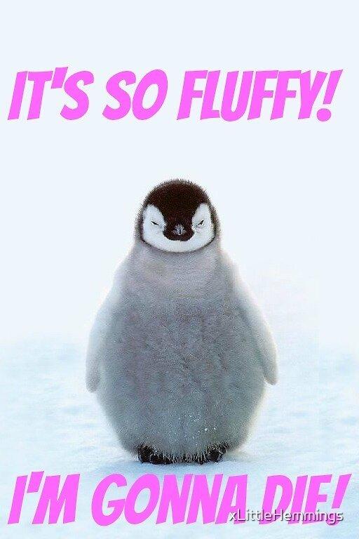Penguin IT'S SO FLUFFY  by xLittleHemmings