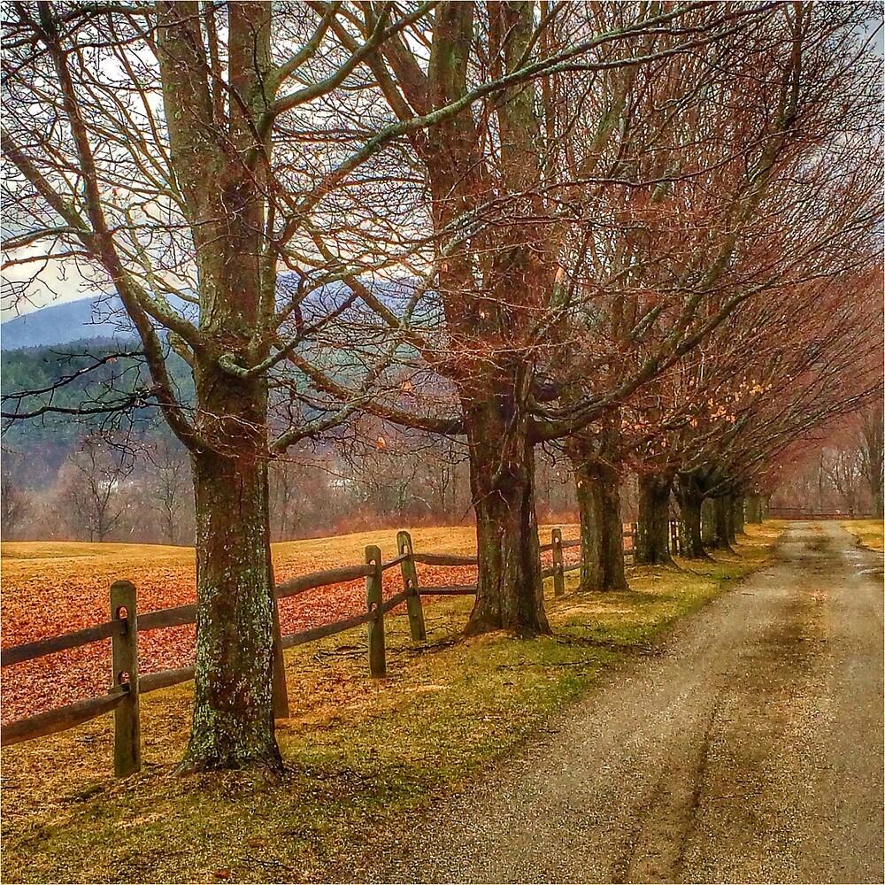 Autumn Lane by HLGlenn