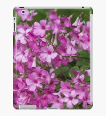 flower in the garden iPad Case/Skin