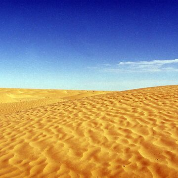 Sahara in 35 mm by viba