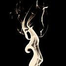 Smoke 9 by Reza G Hassani
