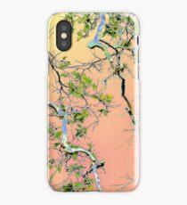 Spring Maple iPhone Case/Skin