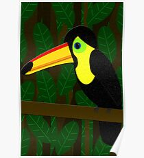 Toucan in the Jungle Poster