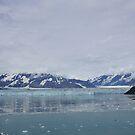 Hubbard Glacier, Alaska by Braedene
