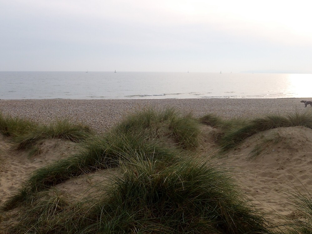 Camber Sands 11.0 by clarebearhh