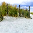 Beach fence at Cape May, N.J....... by DaveHrusecky