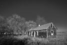 Homestead  by Nate Welk