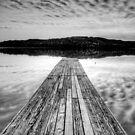 A Walk in Clouds by joelleherman