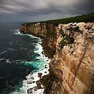 Marley Track, Royal National Park, Sydney by Roger Barnes