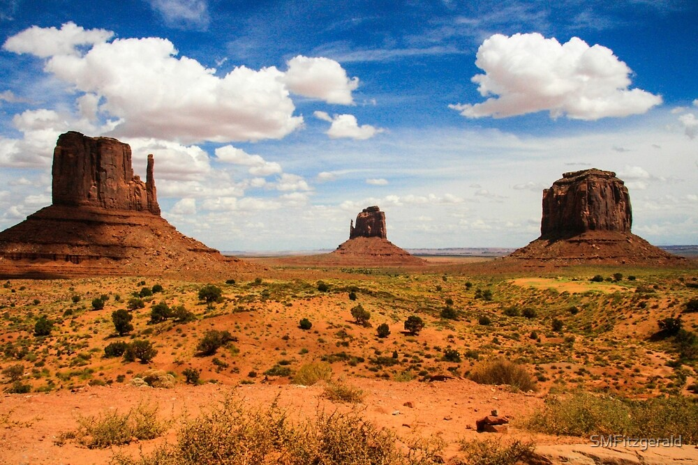 Monument Valley  by SMFitzgerald