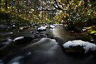 Snowy Stream by Michael Treloar