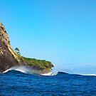 Secluded Point break by Vince Gaeta