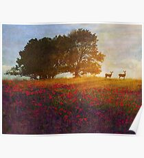 sunset with poppies and deer Poster
