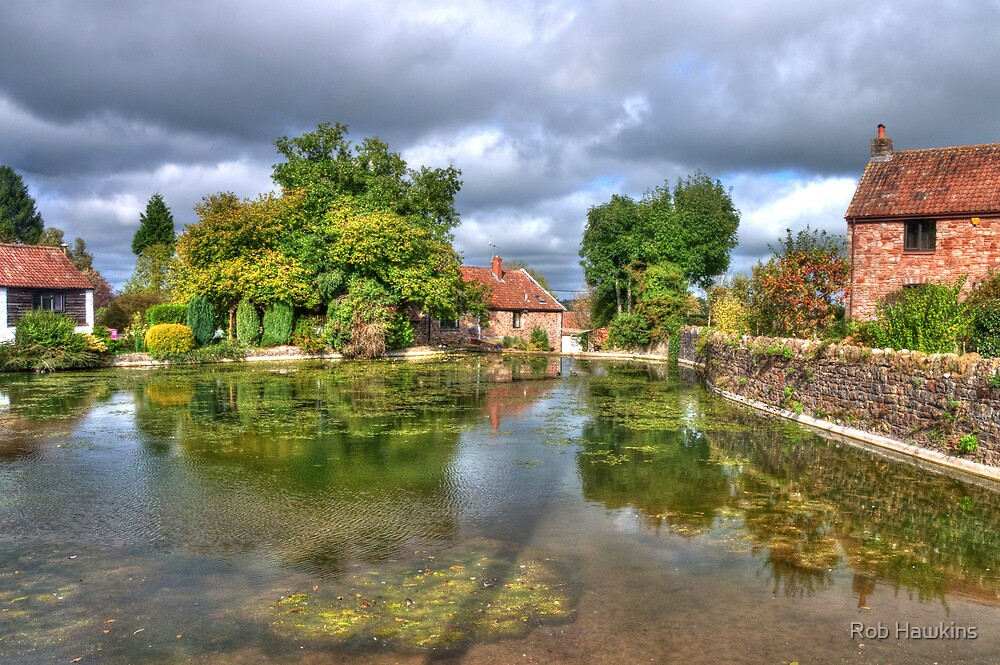 View across the pond by Rob Hawkins