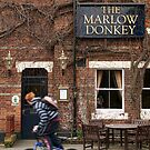 The Marlow Donkey by Irina Chuckowree