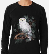 Schneebedeckt Leichter Pullover