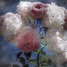 Blooms, Blooms, Blooms!! by Lozzar Flowers & Art